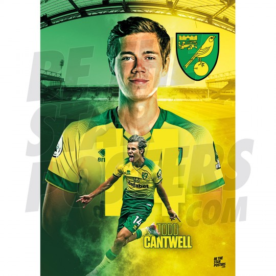 Cantwell Norwich FC A3 19/20 Action Poster
