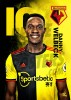 Watford FC A3 Welbeck 19/20 Player Poster