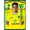 Max Aarons Norwich City 20/21 A3