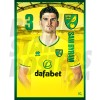 Sam Byram Norwich City 20/21 A3
