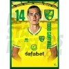 Todd Cantwell Norwich City 20/21 A3/A4